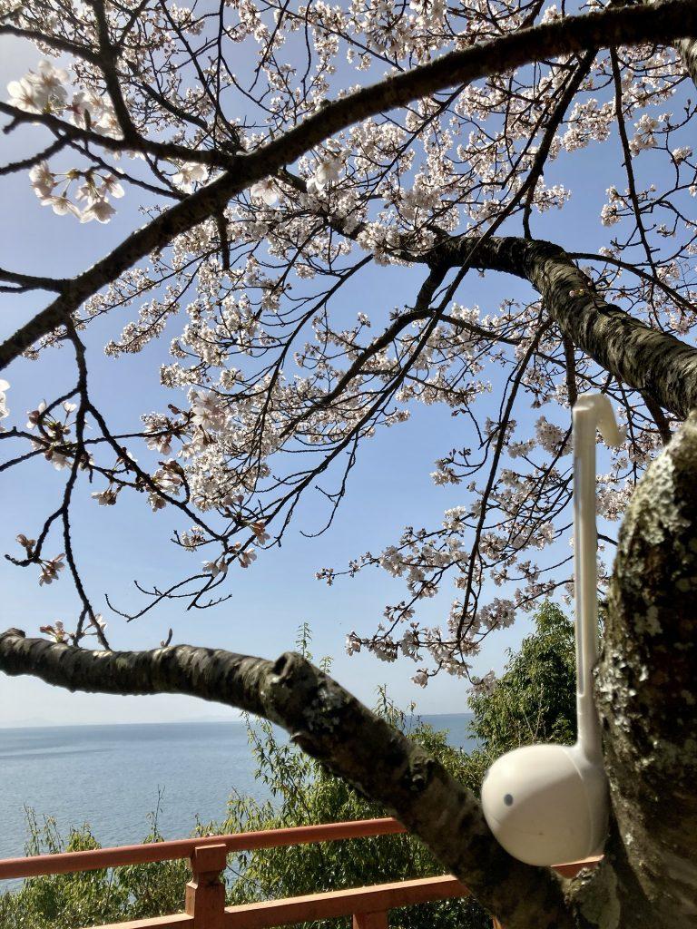 大崎観音より琵琶湖を望む